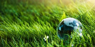 Grönt planetbegrepp för miljö Arkivfoto