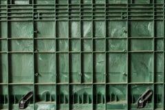 grönt raster Royaltyfri Fotografi