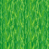 grönt seamless för gräs