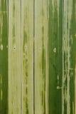 Grönt semless för bambu Royaltyfri Foto