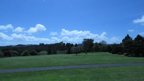 Grönt skönhetland Royaltyfria Foton