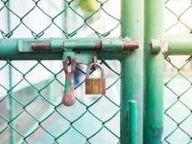 Grönt staket Fotografering för Bildbyråer