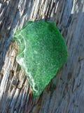 Grönt strandexponeringsglas Royaltyfria Bilder