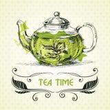 Grönt te för tekanna royaltyfri illustrationer