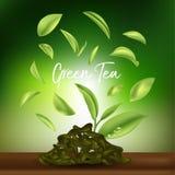 Grönt te, grönt teblad Arkivbild