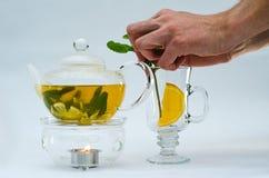 Grönt te i den glass tekannan Royaltyfri Bild