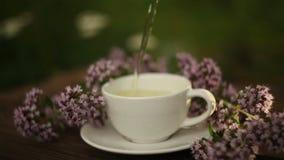 Grönt te i en härlig glass bunke på tabellen stock video