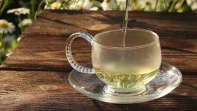 Grönt te i en härlig glass bunke på tabellen lager videofilmer