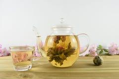 Grönt te med blommablom inom en glass tekanna arkivbilder