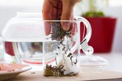 Grönt te med ginseng- och vis manuppsättningen Royaltyfri Foto