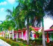 Grönt territorium av det Gran Banya Luxor hotellet i Punta Cana Arkivfoto