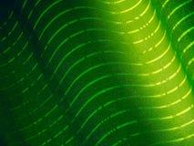 grönt textursilkespapper Royaltyfria Foton
