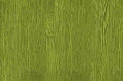 grönt texturträ Fotografering för Bildbyråer