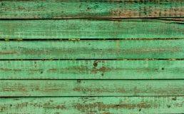grönt trä för bakgrund Arkivfoto
