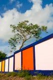 Grönt träd och färg av staketet Royaltyfri Fotografi