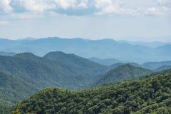 Grönt trädräkningsberg Arkivfoton