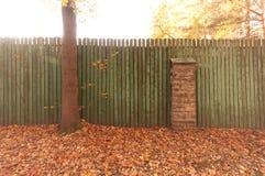 Grönt trämålat staket i gatan Höstsidor nära staketet under träd royaltyfri foto