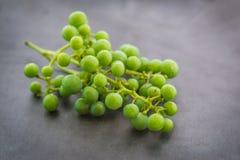 grönt unripe för druvor Fotografering för Bildbyråer