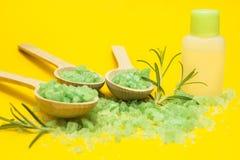Grönt växt- saltar, rosmarin och flaskan av nödvändig olja på en gul bakgrund royaltyfri bild
