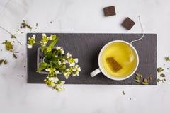 Grönt växt- vitt te med mörk choklad på vit backgroun royaltyfri bild