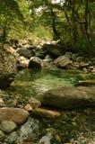 grönt vatten Royaltyfria Foton