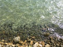grönt vatten Royaltyfria Bilder