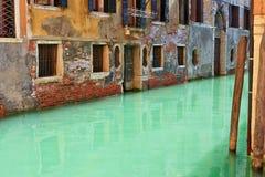 Grönt vatten i en Venetian kanal Royaltyfri Bild