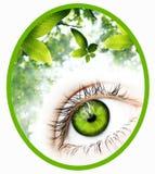 Grönt visionemblem stock illustrationer