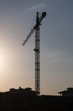 Grúa en puesta del sol Fotografía de archivo