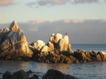 Grúa en roca Imagen de archivo libre de regalías