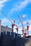 Grúas de construcción encima del edificio Imágenes de archivo libres de regalías