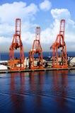 Grúas de Shippig Imagen de archivo libre de regalías