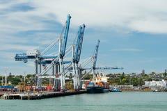 Grúas del buque y del envase de carga en el muelle de Fergusson en los puertos de Auckland Fotos de archivo libres de regalías