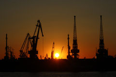 Grúas del mar en puesta del sol en puerto Imágenes de archivo libres de regalías