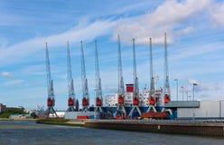 Grúas del puerto Foto de archivo libre de regalías