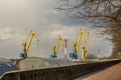 Grúas del puerto en el Vyborg en la primavera Imagen de archivo