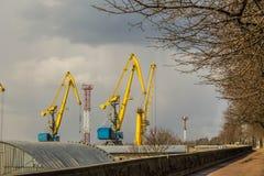 Grúas del puerto en el Vyborg en la primavera Foto de archivo libre de regalías