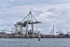 Grúas del puerto en Rotterdam Imagen de archivo libre de regalías