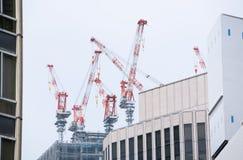 Grúas del rascacielos Foto de archivo libre de regalías