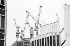 Grúas del rascacielos Fotos de archivo libres de regalías