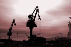 Grúas en la puesta del sol Fotografía de archivo