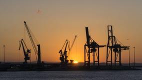 Grúas en luz de la puesta del sol Fotografía de archivo libre de regalías