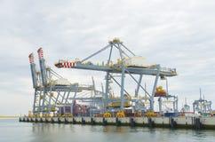 Grúas grandes del puerto Fotografía de archivo