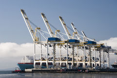 Grúas portuarias Imagen de archivo libre de regalías