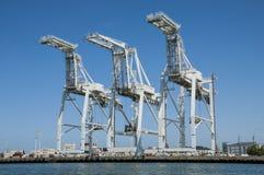 Grúas portuarias Fotografía de archivo libre de regalías