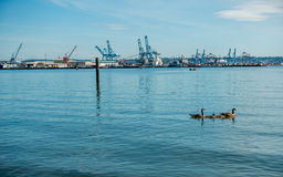 Grúas portuarias imagen de archivo