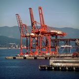 Grúas portuarias del cargo Imagen de archivo libre de regalías