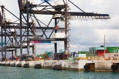 Grúas y envases en el puerto de Miami Imagen de archivo