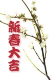 Grüße und Pflaume-Blüte Stockfoto