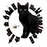 Grünäugige schwarze Katze auf einem Hintergrund der alten Stadt Lizenzfreies Stockbild